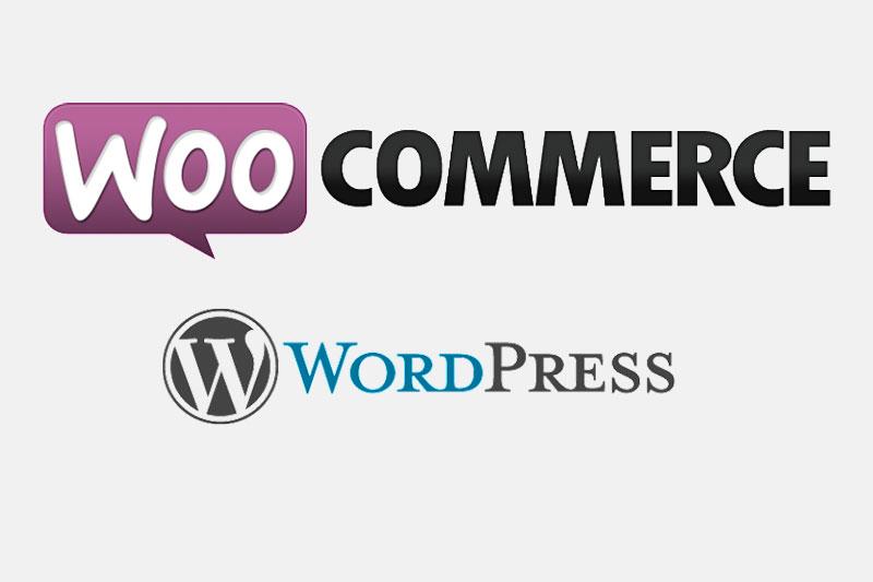 Qué es Woocommerce: te explicamos todo sobre este plugin